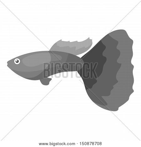 Guppy fish icon monochrome. Singe aquarium fish icon from the sea, ocean life monochrome.