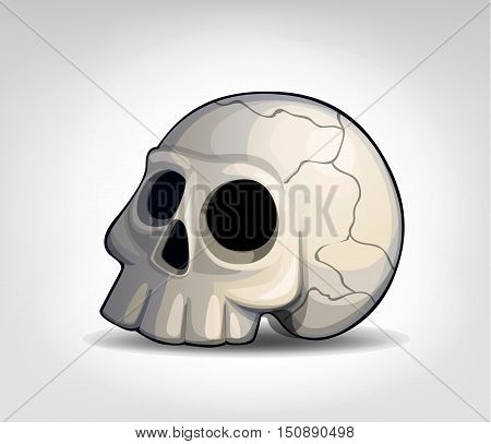 Vector illustration of a skull on a light background.