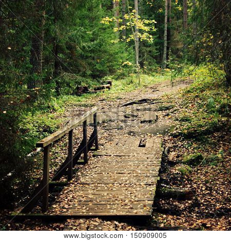 Small wooden bridge in the forest. Valaam island. Aged photo. Footpath in the woods. Toned image. Wooden pathway in the grove. Outdoors. Island of Valaam Republic of Karelia Russia.