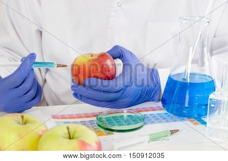 Technician Uses A Syringe. Genetic Modification Of Fruits And Vegetables.