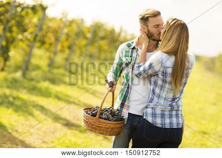 Photo of a young couple kissing in a vineyard.