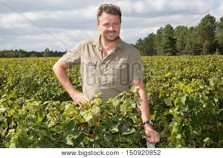 Middle Aged Winemaker In Vineyard With Arms Crossed