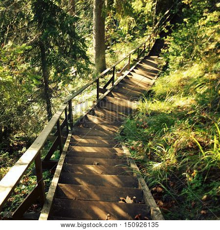 Wooden Stairs in the forest. Wild nature of Russian North. Island Sviatoy (Valaam archipelago). Stairway to the Alexander Svirsky cave. Place of pilgrimage. Valaam Kareliya Russia.