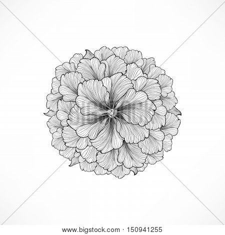 Floral background. Greeting card with flower. Flourish border. Gentle decor with summer flower dahlia. Black and white vector illustration