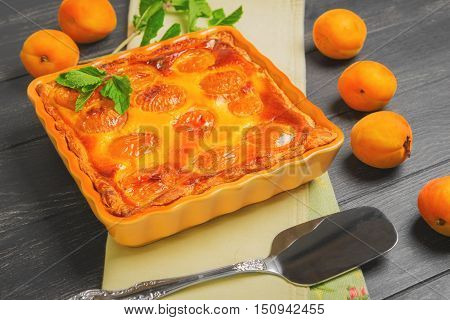 Fresh baked fruit pie tart with apricot cottage cheese. Apricot pie tart on the table sprig of mint cloth. Metal Shovel for apricot pie tart cake dark black wooden background.
