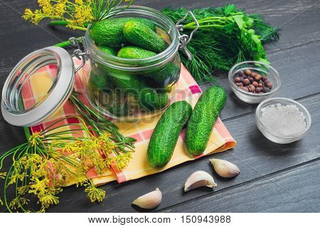 Canning pickling fresh homemade cucumbers pickling or salting. Greens for canning pickling cucumbers dill parsley garlic pepper salt. Fresh cucumbers on cloth. Dark black wooden background.