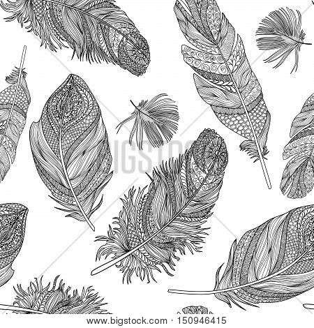 Feather seamless pattern.  feathers on a white background. Vintage tribal feather collection. Series of doodle feather.