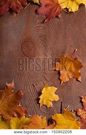 the colorful autumn maple leaves on wooden background