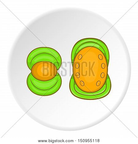 Knee pads icon. Cartoon illustration of knee pads vector icon for web