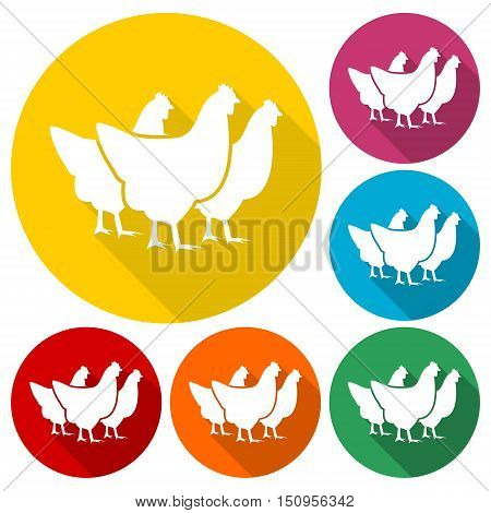 Simple vector chicken silhouette with long shadow
