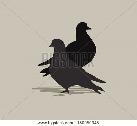 Two doves. Bird silhouette. Love in peace symbol. Marriage greeting card