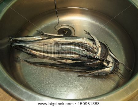 a lot of needlefish with water in a metal washbasin