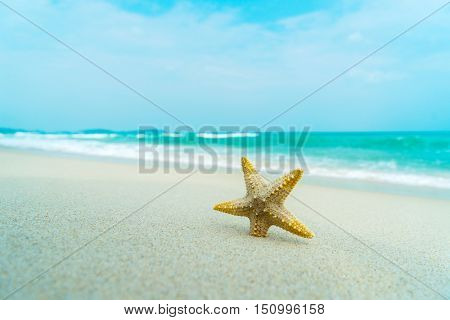 Starfish on perfect tropical beach