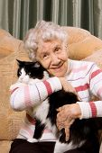 The grandmother with a cat on a sofa poster