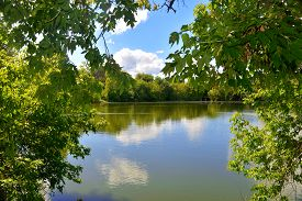 Forest Park. River and green trees. Summer sky and clouds. Reflection of water