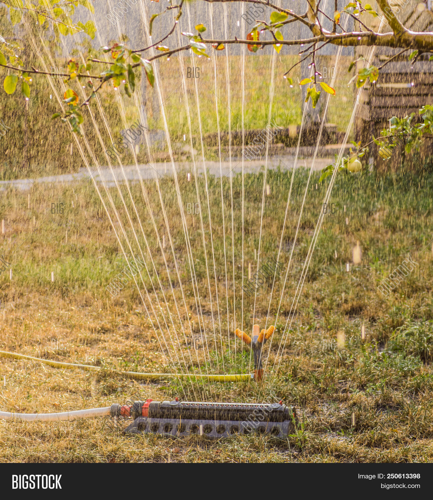 Device Irrigation Image & Photo (Free Trial)   Bigstock