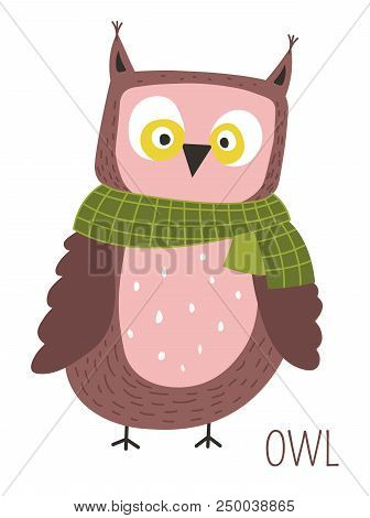 Owl With Scarf Childish Cartoon Book Character. Wild Bird With Ridiculous Face On Small Claws For Fa