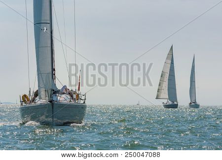 Three beautiful white yachts, sailboats or sail boats sailing at sea on a calm, bright sunny day