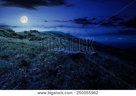 Rocks On Grassy Hillside Of The Mountain At Night In Full Moon Light. Yellow Dandelions Along The Pa