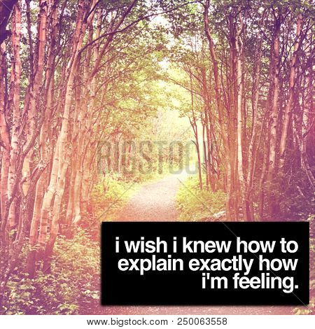 Quote - I wish I knew How to explain exactly how i'm feeling.