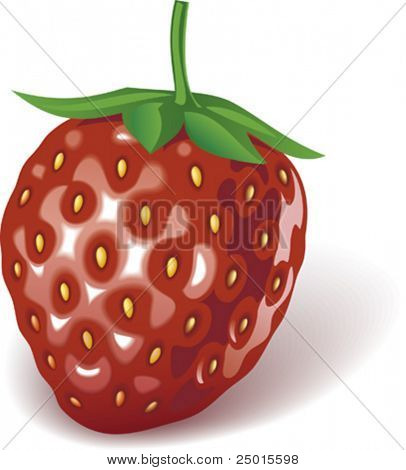 Just a strawberry on a white background.