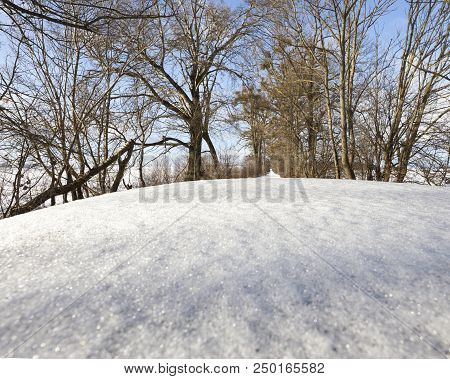 Snow Covered Car Roof And Road With Trees Covered With Snow, Close-up Of Car Part And Winter Nature,
