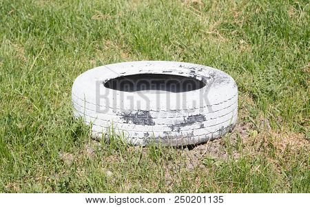 Homemade Flowerbed From A Tire