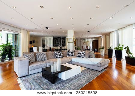 Modern living room with large leather sofa. Nobody inside
