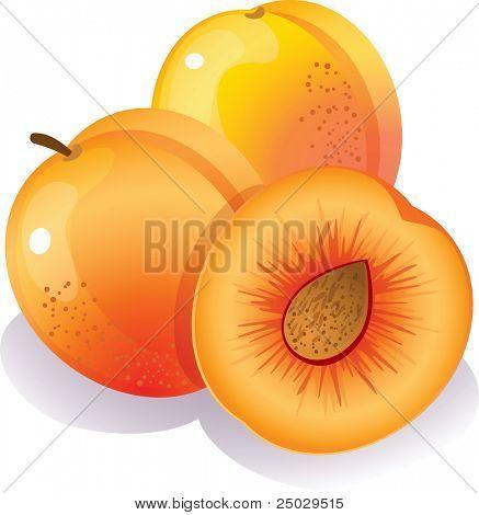 Vector illustration - Three ripe peaches