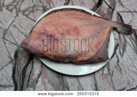 Pleuronectes Platessa Plaice-fluke, Fluke, Plaice, Hen Fish. Fresh Caught Lying On A Light Backgroun