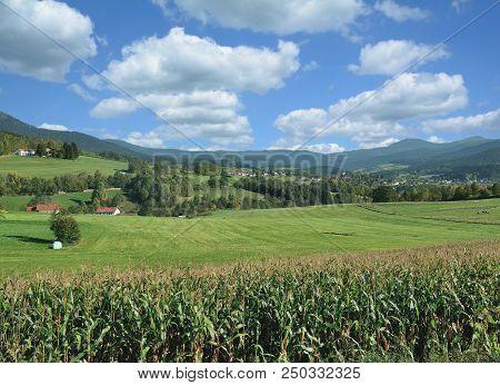 In Lamer Winkel Region Near Village Of Lam In Bavarian Forest,lower Bavaria,germany