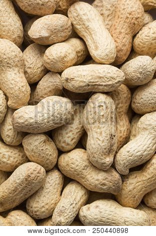 A Lot Of Peanuts As A Texture Background