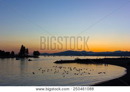 Sunset Over English Bay In Vancouver Bc, Canada. Flock Of Birds In The Water At Quiet Sunset Over Th
