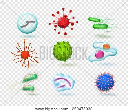 Realistic Viruses. Bacteria Germs Microorganism Virus Cell. 3d Microscopic Infection Cells Ebola Mic