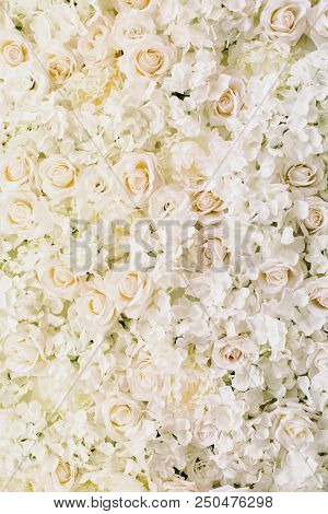 Many Artificial White Roses, Hydrangea, Peonies Flower As Background And Decoration, Stock Photo Ima