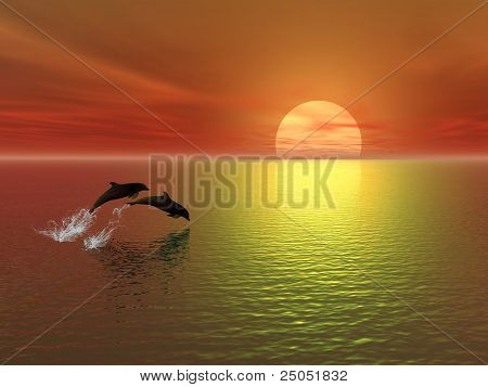 sunset and dolphins