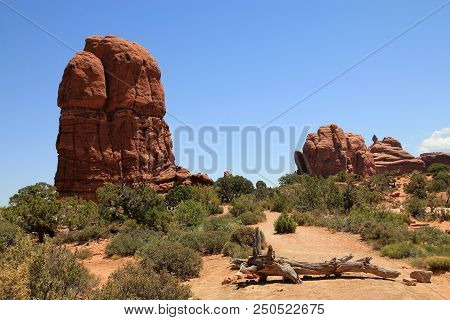 Rocks In Arches National Park In Usa