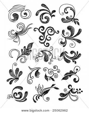 Hand drawn floral elements. Vector illustration.