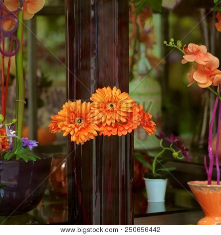 Storefront Of Flowers Shop With Orange Gerbera, Orchids And Various Vases Closeup Outdoors