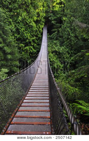 Lynn Canyon Supension Bridge, Vancouver, Canada