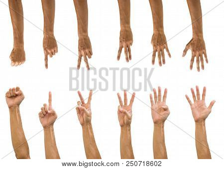 Set Of Hand Gesture Isolated On White Background With Clipping Path. Collection Of Multiple Front An