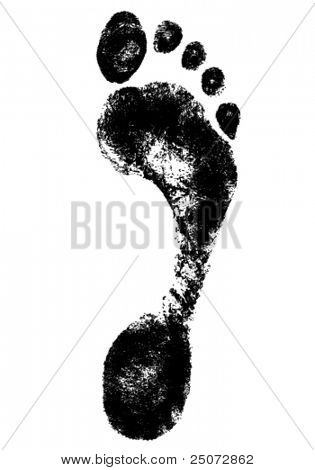 Detailed vector image of foot print.