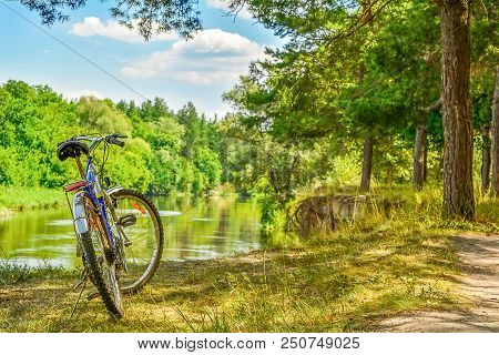 The Bicycle Is Situated On The Bank Of The River, Over Break. Retro Bicycle, Pine Wood, River. River