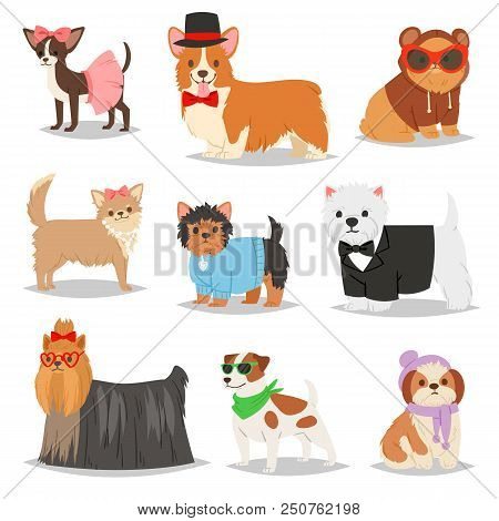 Dog Vector Puppy Pet Animal Doggie Character In Canine Clothing Of Domestic Dog-breeding Illustratio