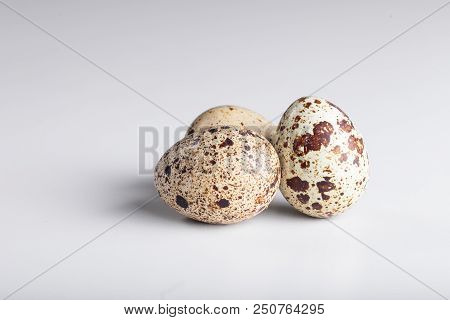Organic Quail Bird Eggs
