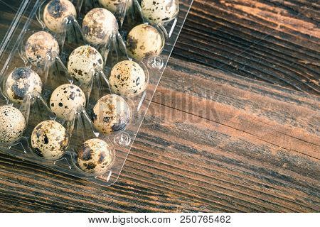 Quail Bird Eggs
