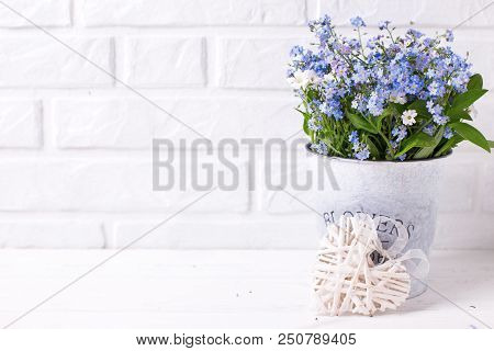 Floral Background - Blue Forget-me-nots Or Myosotis Flowers   In Grey Bucket And Decorative Heart On