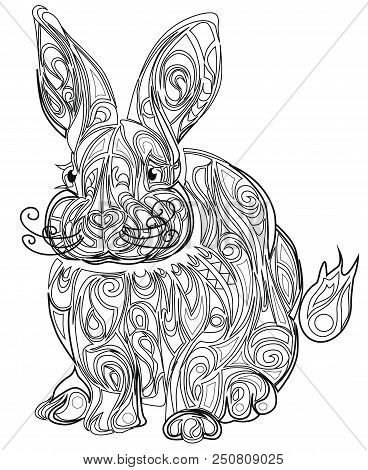 Color Therapy An Anti Stress Coloring Book Hare White Background