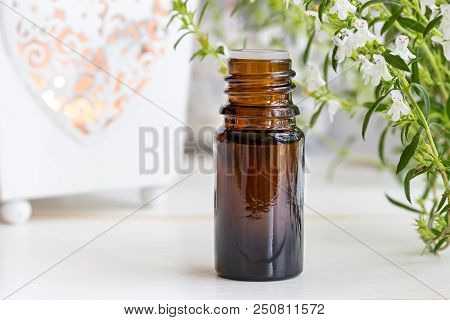 A Bottle Of Mountain Savory Essential Oil With Fresh Blooming Satureja Montana Plant On A White Back
