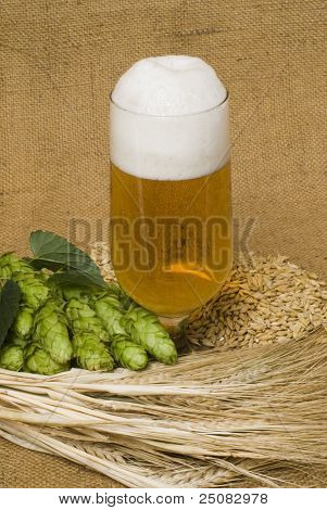 still life with beer glass and hop cones poster
